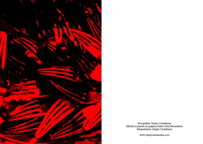 http://sergiocastaneira.com/files/gimgs/th-6_lostkey maqueta pablo ortiz pdf impresión27.jpg